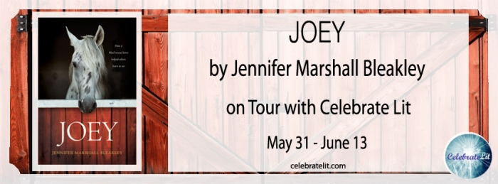 Joey-celebration-tour-FB-banner-copy.jpg